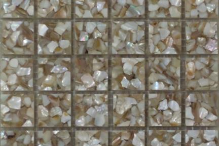 אריחי פסיפס לחיפוי קיר מאבן R252. פסיפס 2.5*2.5 רזינה+ רסיסי צדף בז'.  גודל: 30.5*30.5