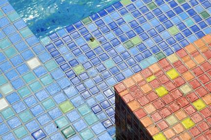 בריכת השחיה. שלל צבעים   צילום: שי אדם