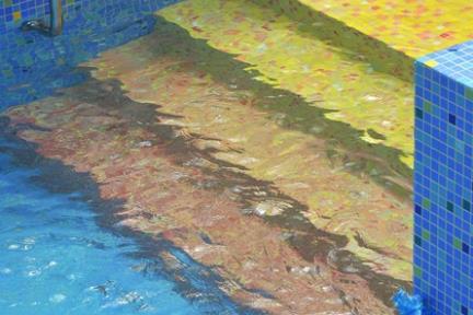 בריכת השחיה. מדרגות   צילום: שי אדם