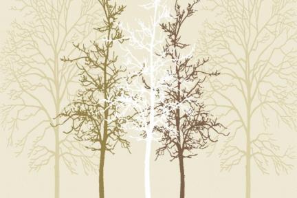 דגם Set121. זוג עצים  גודל: 120*60