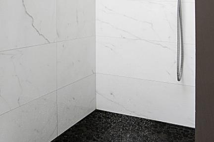 בית ברמת אביב. מקלחת.    צילום: ארתור דריגנט.