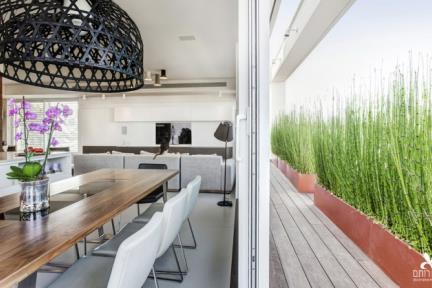נוף פנימי. שילוב פתרונות צמחייה ליצירת נוף פנימי    תכנון ועיצוב: ליאת דביר-רותם.  צילום: ניצן הפנר.