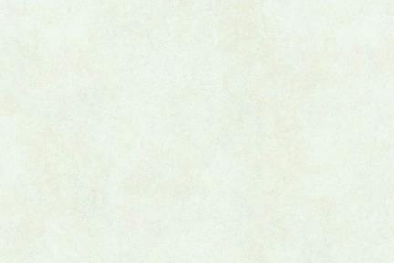 אריחי ריצוף  גרניט פורצלן 80*80 1015574. פורצלן בז מט  גודל: 80*80