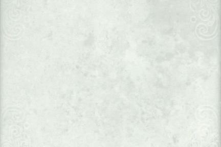 אריחי ריצוף  קרמיקה ענתיקה 1013034. קרמיקה אופוויט עם מסגרת עדינה.  גודל: 20*20