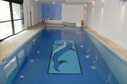 דולפין בבריכה